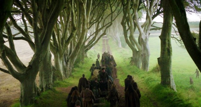 game of thrones-black hedges